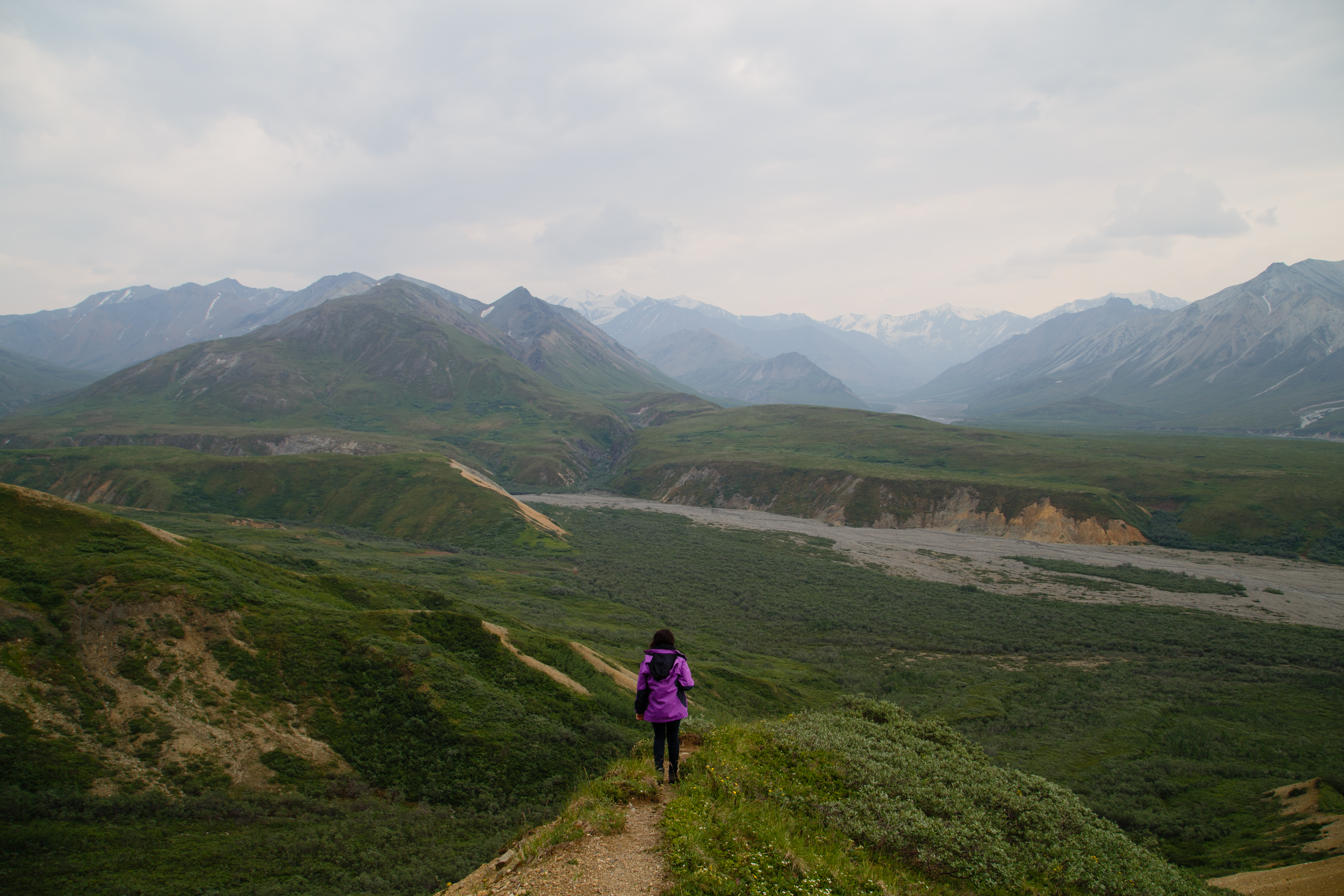 Day 3 - Bus to Eielson - IMG_2892.jpg